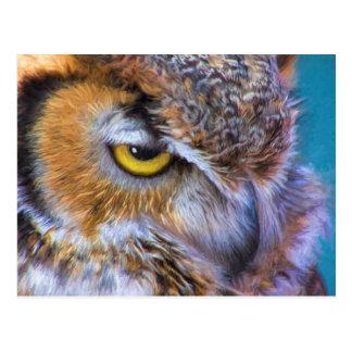 Beautiful Great Horned Owl Bird Golden Eye Postcard