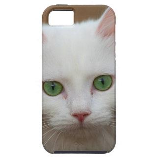 Beautiful green eyed white cat portrait. iPhone 5 case