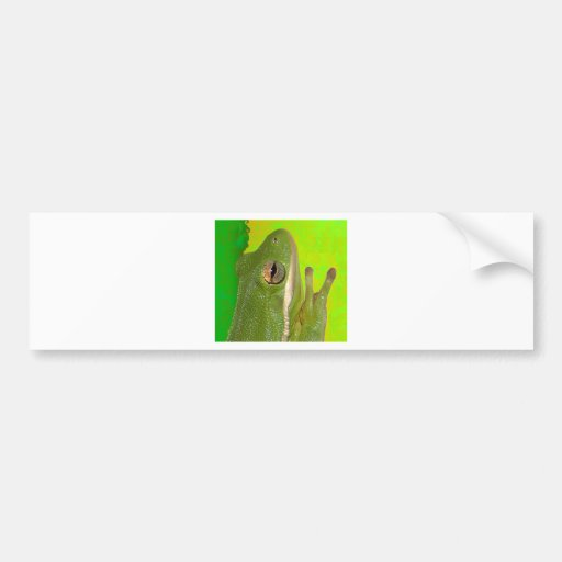 Beautiful green tree frog giviing the peace sign. bumper sticker