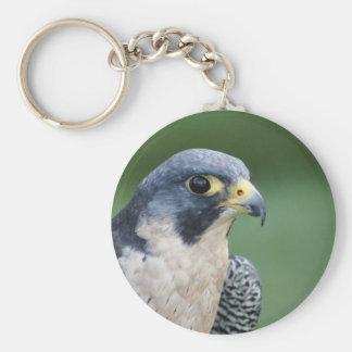 Beautiful grey-white Pelegrine Falcon Key Chains