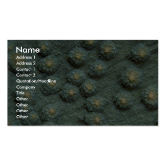 Beautiful Hard corals Business Card