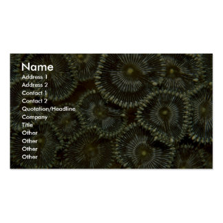 Beautiful Hard corals from Indonesia Business Card Templates