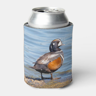 Beautiful Harlequin Duck on the Rock Can Cooler