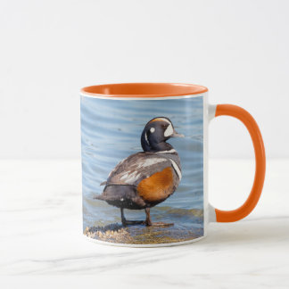 Beautiful Harlequin Duck on the Rock Mug