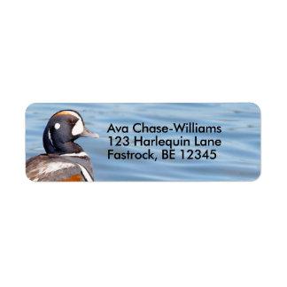 Beautiful Harlequin Duck on the Rock Return Address Label