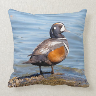 Beautiful Harlequin Duck on the Rock Throw Pillow