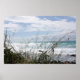 Beautiful Hawaiian Ocean Poster