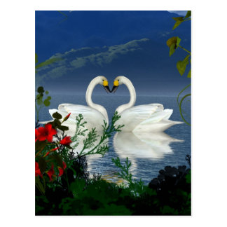 Beautiful heart swans red flowers 1 post cards