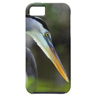 Beautiful Heron iPhone 5 Case