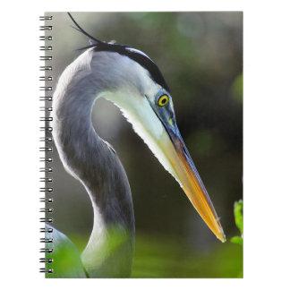 Beautiful Heron Notebooks