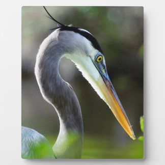 Beautiful Heron Plaque