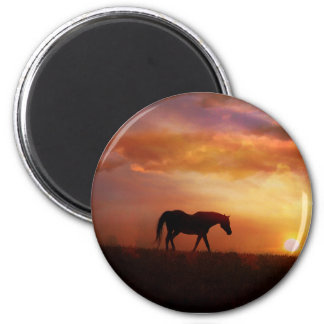 Beautiful Horse and Sunset Horse Photography Magne 6 Cm Round Magnet