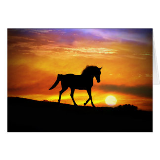 Beautiful Horse Art Blank Note Card
