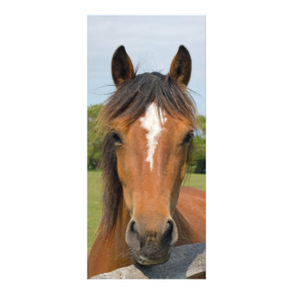 Beautiful horse head bookmark, gift idea rack card template