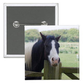Beautiful Horse head close-up button gift idea