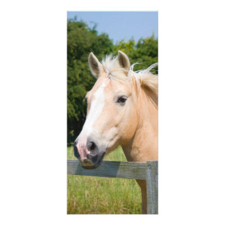 Beautiful horse head palamino custom name bookmark 10 cm x 23 cm rack card