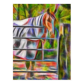Beautiful horse in rug post card