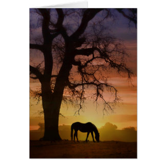 Beautiful Horse in Southwestern Sunset Birthday Card