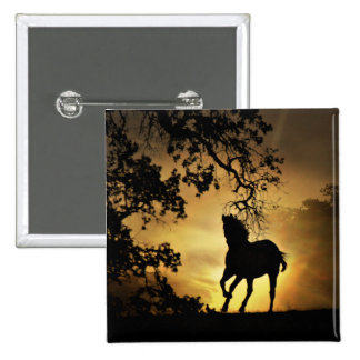 Beautiful Horse in the Sunset Button