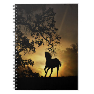 Beautiful Horse in the Sunset Notebook
