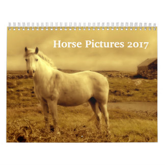 Beautiful Horse Pictures Images 2017 Wall Calendar