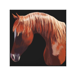 Beautiful Horse Portrait Canvas Print