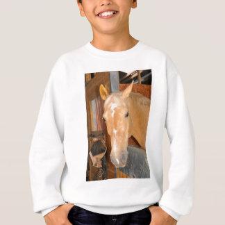Beautiful horse sweatshirt