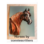 Beautiful Horses by conniescritters Postcard
