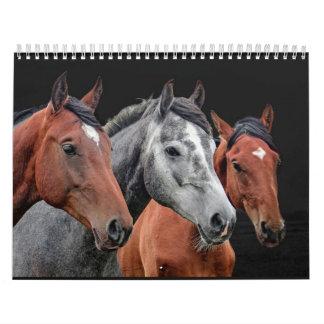 BEAUTIFUL HORSES PORTRAIT. HORSE FACE CLOSEUP CALENDAR