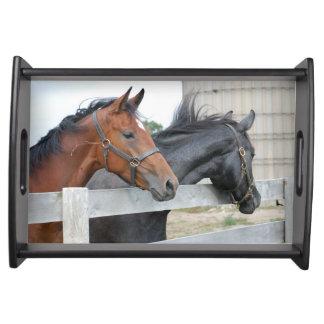 Beautiful Horses Serving Platters