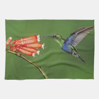 Beautiful Hummingbird Tea Towel