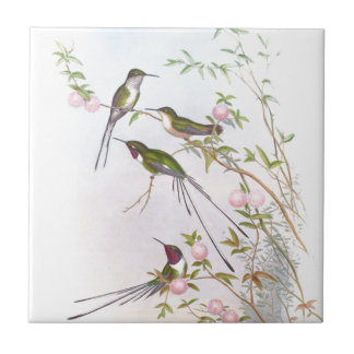 BEAUTIFUL HUMMINGBIRDS SMALL SQUARE TILE