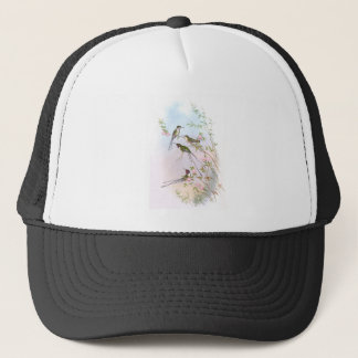BEAUTIFUL HUMMINGBIRDS TRUCKER HAT