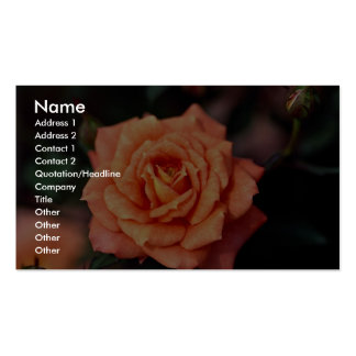 Beautiful Hybrid Tea Rose Business Card Template