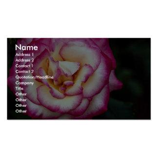 Beautiful Hybrid Tea Rose Business Card