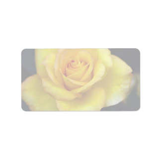 Beautiful Hybrid Tea Rose Address Label