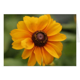 Beautiful in Yellow Tiger Eye flower note card