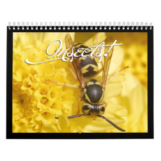 Beautiful Insects Calendar 2017