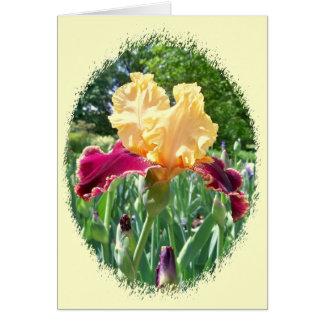 Beautiful Iris Notecard Note Card