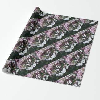 Beautiful Jasmine Flowers In Full Bloom Wrapping Paper