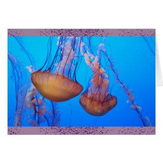 Beautiful Jellyfish Blank Note Card