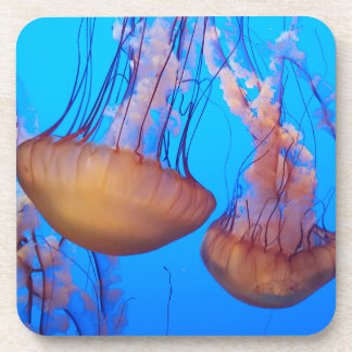 Beautiful Jellyfish Coasters