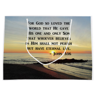 BEAUTIFUL JOHN 3:16 SCRIPTURE SUNRISE PHOTO LARGE GIFT BAG