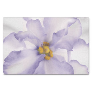 Beautiful Lavender Orchid Tissue Paper