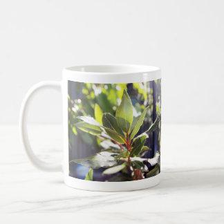 Beautiful Leaves Nature Mug