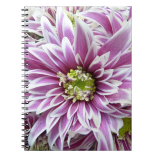 Beautiful Lilac and White Flower Notebooks