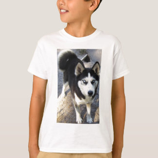 Beautiful little Blizzy! T Shirt