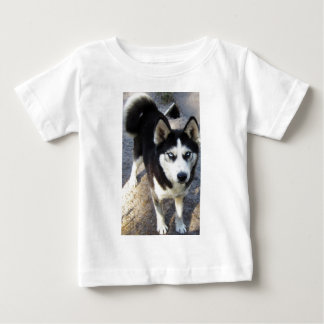 Beautiful little Blizzy! Tees