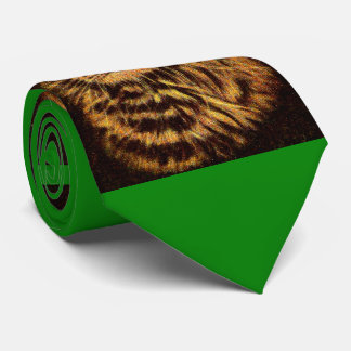 beautiful long-haired tabby cat tie