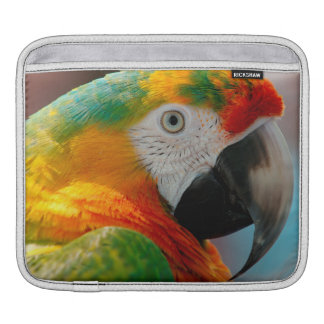 Beautiful Macaw iPad Sleeve